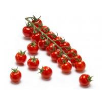 Sırık Cherry Domates Tohumu + Solucan Gübresi Hediyeli