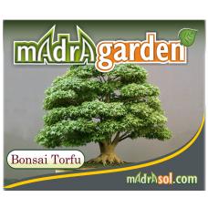 Bonsai Toprağı Karışımı - Bonsai Torfu 5 LT