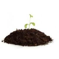Sebze Fidesi Toprağı Harcı %100 Organik Karışım 15 Litre