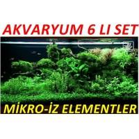 Akvaryum Mikro Set Eser Elementler 6 Lı Set